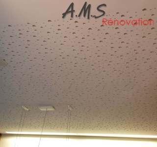 AMS Rénovation -  Faux plafond
